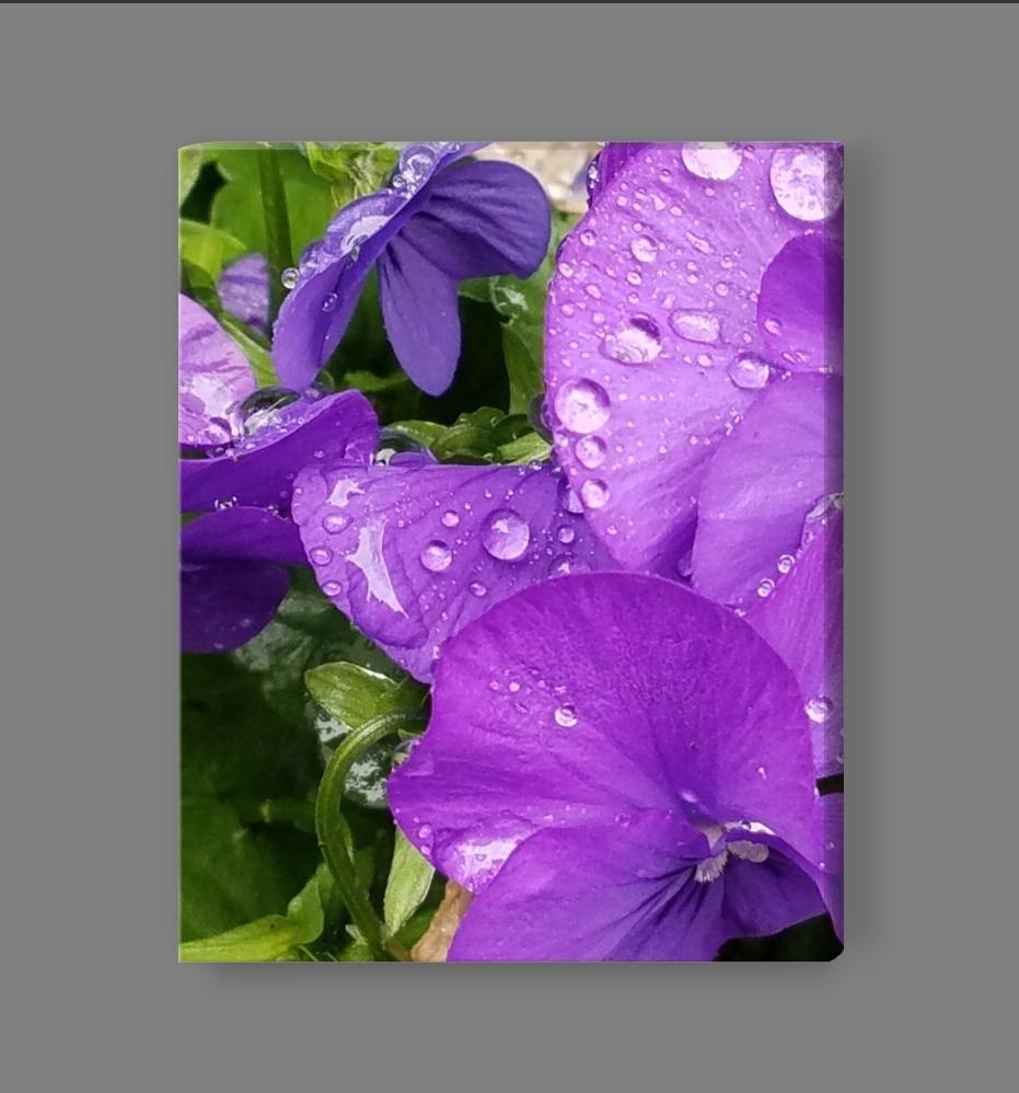 Buy the Purple Drop Flower